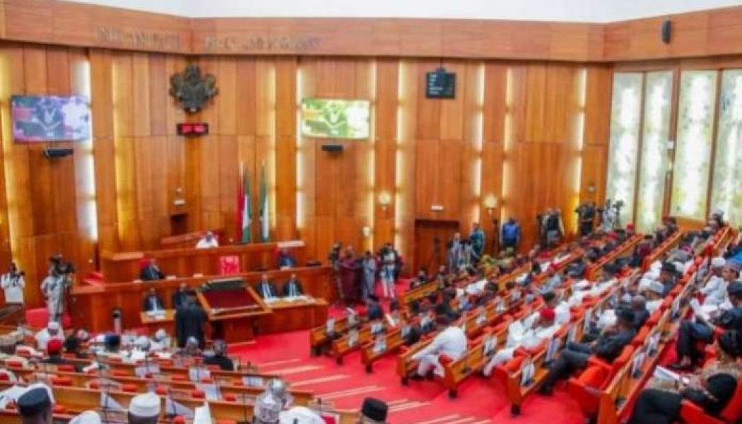 Senate passes amended AMCON bill, empowers agency to seize debtors' assets