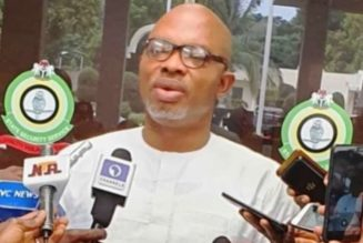 DSS: We'll no longer tolerate those seeking to throw Nigeria into anarchy