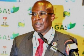 Minister: Nigerian government to scale up domestic gas expansion, monetisation drive