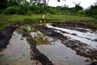 NGO: Oil spills killed 16,000 Niger-Delta babies in a year