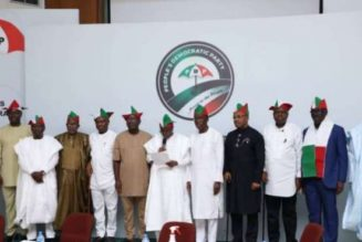 PDP governors asks President Buhari to summon Police Council meeting