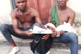 UNICAL security apprehends suspected cultists with hard drugs on campus