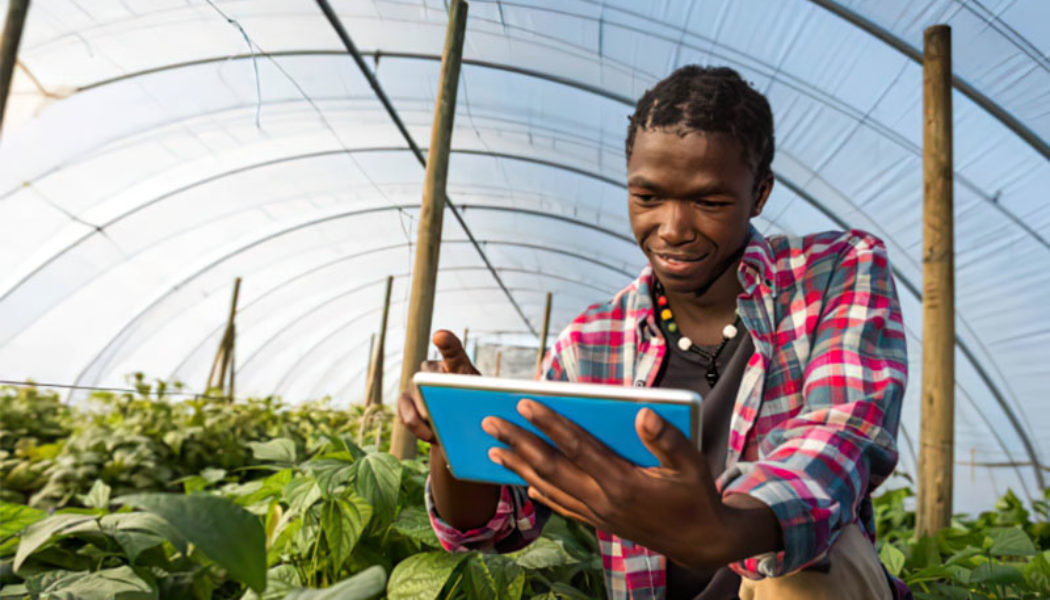 Agritech SupPlant Raises $10-Million to Accelerate South African Agriculture Growth