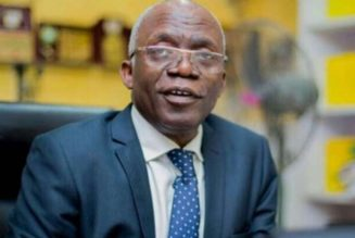 Femi Falana: Old grazing reserves law applied only to northern states