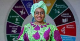 Nigerian government urges increased awareness on violence against women, girls
