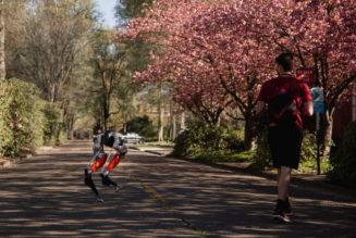 Could you beat this bipedal robot's 5K run time?