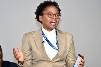South Africa Replaces Communications and Digital Tech Minister