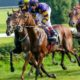 Andrew Mount Horse Racing Tips – Monday September 20th