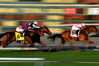 Horse Racing NAP of the Day: 2/1 Horse Racing Betting Tip This Tuesday + a £25 Risk Free Bet