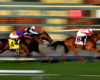 Horse Racing NAP of the Day: 6/1 Horse Racing Betting Tip This Monday + a £25 Risk Free Bet