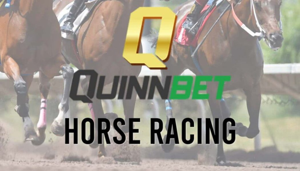 Tuesday's Horse Racing Live Streaming – Watch Harvest Festival andListowel Stakes Live + Get a Free Bet