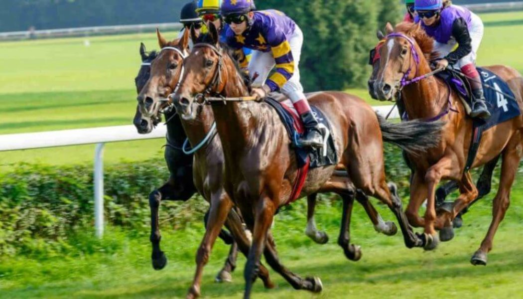 Andrew Mount's Horse Racing Tips – Friday October 22nd
