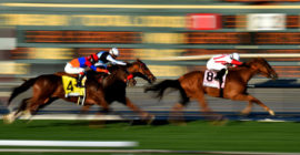 Horse Racing NAP of the Day: 13/8 Horse Racing Betting Tip This Sunday + a £25 Risk Free Bet