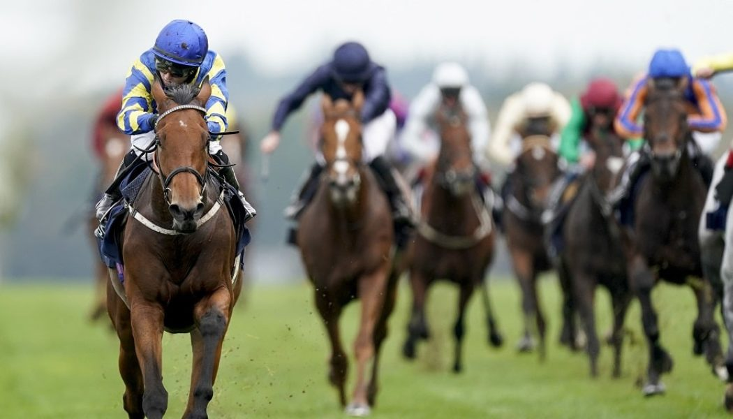 QIPCO British Champions Day Betting Tips – Who to Back in Ascot Champions Day Supporting Races